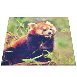 Art Studio 15216 red Panda Canvas Print