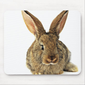Art Subject Mouse Pad