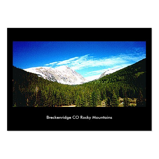Art Trading Museum Business Cards Breckenridge CO2