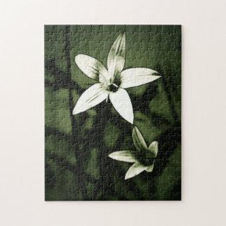 art wildflower puzzle