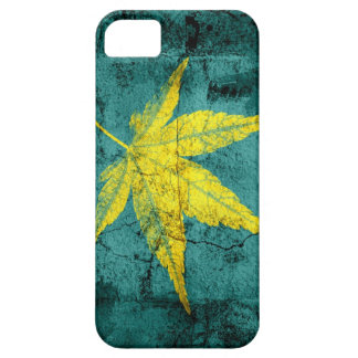Art Yellow Leaf on Old Cracked Wall iPhone 5 Cover