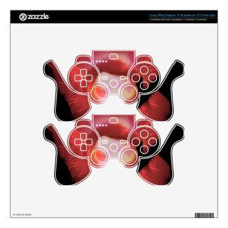 Arte 13c del flamenco mando PS3 skins
