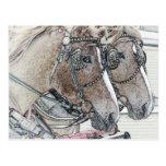Arte 2010 2 del caballo tarjeta postal