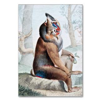 Arte abigarrado del vintage del babuino