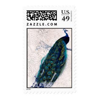 Arte alterado pavo real del vintage sellos postales