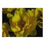 Arte amarillo del tulipán invitación 12,7 x 17,8 cm