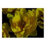 Arte amarillo del tulipán plantilla de tarjeta de visita