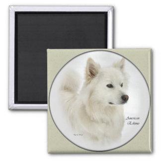 Arte americano de los regalos del perro esquimal imán cuadrado