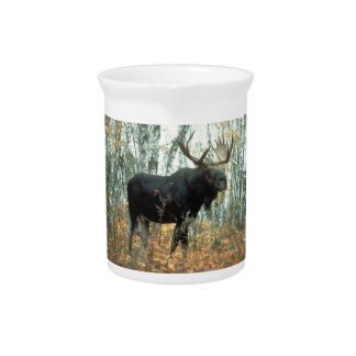 Arte animal de la fauna del parque de los árboles  jarras para bebida