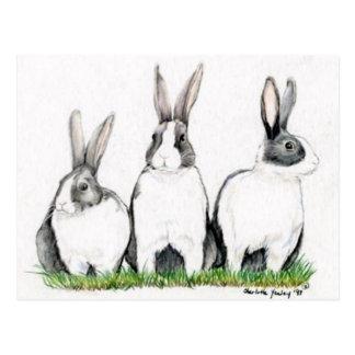 "Arte animal Postacard de ""tres conejitos"" Postal"