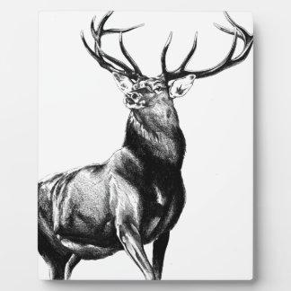 Arte antiguo del macho que dibuja la naturaleza placas con foto