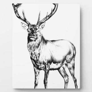 Arte antiguo del macho que dibuja la naturaleza placas de plastico