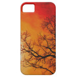 Arte ardiente de la puesta del sol y de la iPhone 5 Case-Mate coberturas