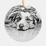 Arte australiano del perro de pastor adorno de navidad