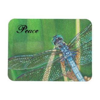 Arte azul del lápiz del color de la libélula en el imán rectangular