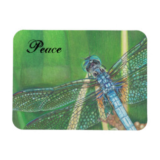 Arte azul del lápiz del color de la libélula en el iman rectangular