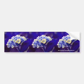 Arte azul vivo del coche de la pegatina para el pa pegatina de parachoque