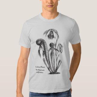 Arte botánico de la planta de la cobra polera