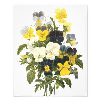 """Arte botánico de las violetas y de las flores del  folleto 4.5"""" x 5.6"""""""