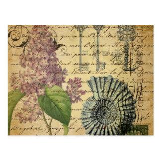 arte botánico París de los seashells de la lila de Postales