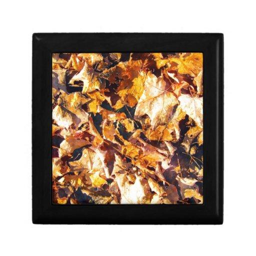 Arte caido de la acuarela del invierno del otoño d cajas de regalo
