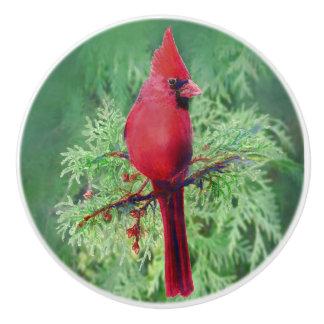 Arte cardinal rojo de la naturaleza del pájaro de pomo de cerámica