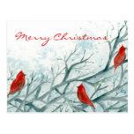 Arte cardinal rojo de los pájaros de la postal de