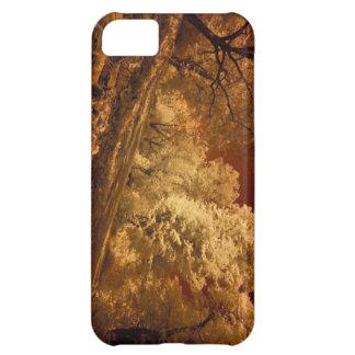 ARTE CERCA: AUGLE, FUNDA PARA iPhone 5C