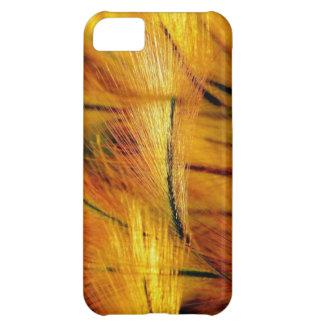 ARTE CERCA: STEVE AUGLE, FUNDA PARA iPhone 5C