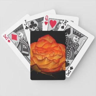 Arte color de rosa mojado magnífico de la foto barajas de cartas