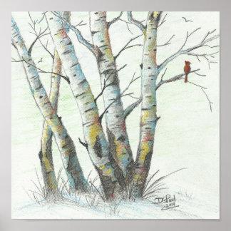 Arte coloreado abedules del lápiz del invierno póster