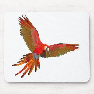 Arte colorido de la mosca del macaw del escarlata alfombrillas de ratones