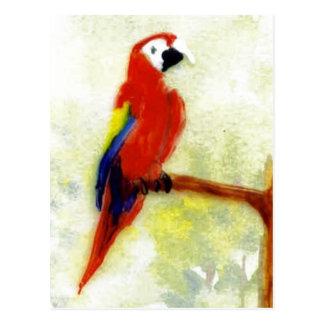Arte colorido del pájaro del Macaw Postal