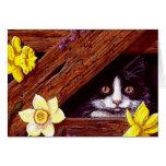 Arte Creationarts de los narcisos del gato del smo Felicitación