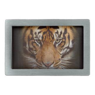 Arte de acecho de la fauna del gato grande del tig hebilla de cinturón rectangular