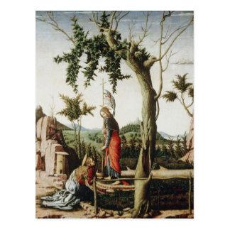 Arte de Andrea Mantegna Tarjetas Postales