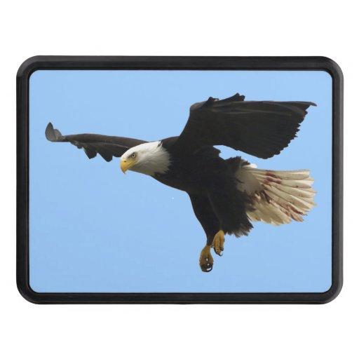 Arte de aterrizaje de la foto de Eagle calvo Wildi Tapas De Tráiler