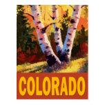 Arte de Colorado Postal