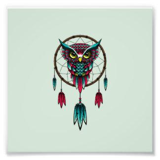 Arte de Dreamcatcher del pájaro del búho Fotografías