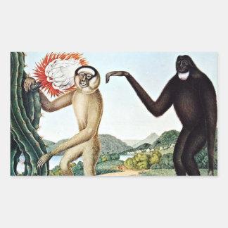 Arte de Hoolock Gibbons (Zotl) Rectangular Pegatina