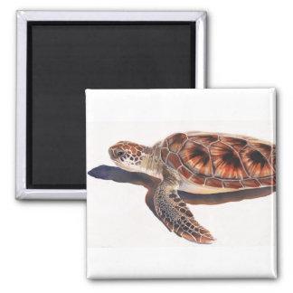 Arte de la acuarela de la fauna de la tortuga de m imán para frigorifico
