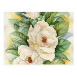 Arte de la acuarela de la flor de la magnolia - postal