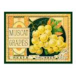 Arte de la etiqueta del cajón de la fruta del postal