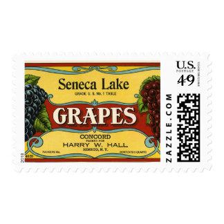 Arte de la etiqueta del cajón de la fruta del timbres postales