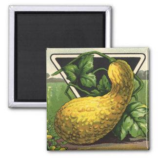 Arte de la etiqueta del paquete de la semilla del imán cuadrado