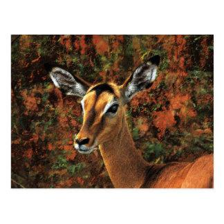 Arte de la fantasía del impala de la caída tarjeta postal