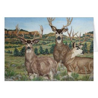 Arte de la fauna del ciervo mula tarjetón