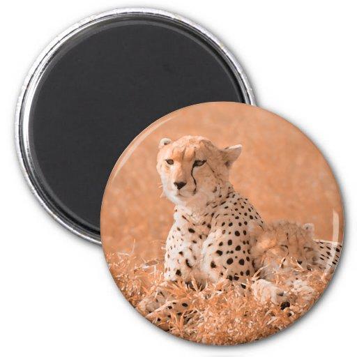 Arte de la fauna del guepardo y del cachorro imán redondo 5 cm