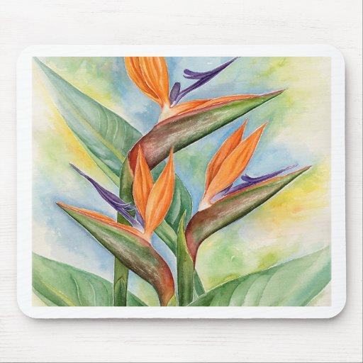 Arte de la flor de la ave del paraíso - multi alfombrilla de ratones