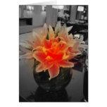 Arte de la flor felicitacion
